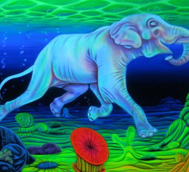 Blacklight-Elefant