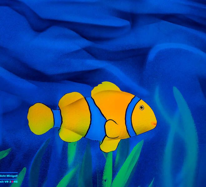 Nemo-Fisch