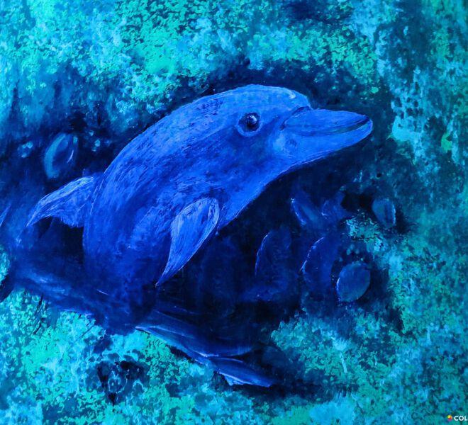 Delfin-uv