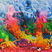 Psychedelic-Softrock-Colory-Krebs